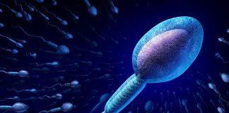 ইনট্রাউটেরাইন ইনসেমিনেশন (আইইউআই) প্রজনন চিকিত্সা প্রক্রিয়া