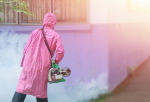 Get your surroundings fumigated regularly.