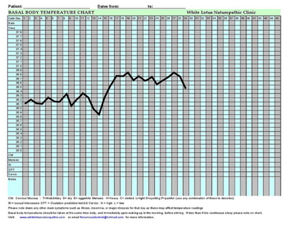 graphic about Bbt Chart Printable titled How towards Determine Being pregnant in just Basal Overall body Weather Chart
