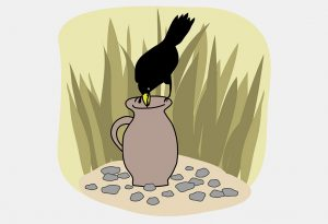 The Crow and The Jug