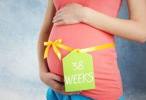 Belly at 38 Weeks of Pregnancy