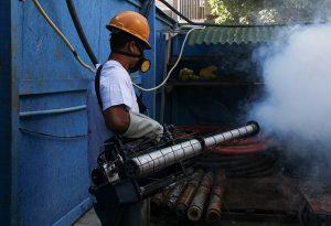 How Does the Chikungunya Virus Spread?