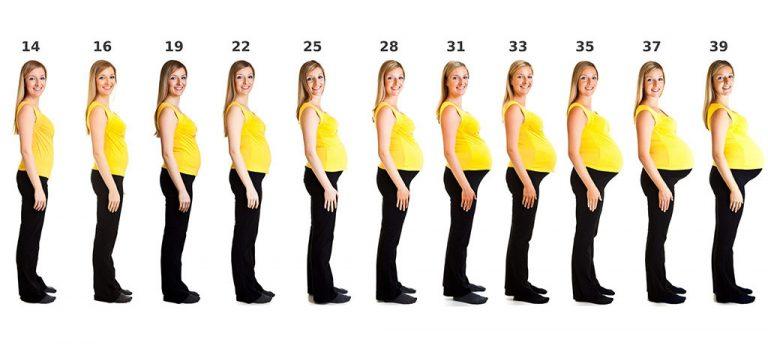 गर्भावस्था के दौरान शारीरिक परिवर्तन