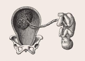 প্লাসেন্টা প্রেভিয়া: কারণ, ঝুঁকি, এবং চিকিত্সা