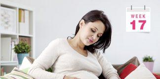 गर्भधारणा: १७वा आठवडा