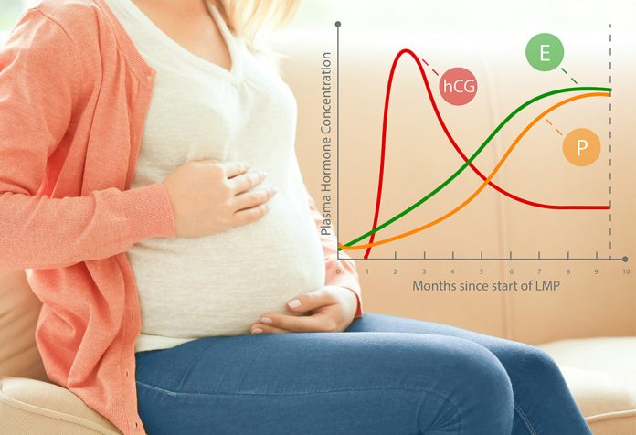 what hcg level indicates pregnancy