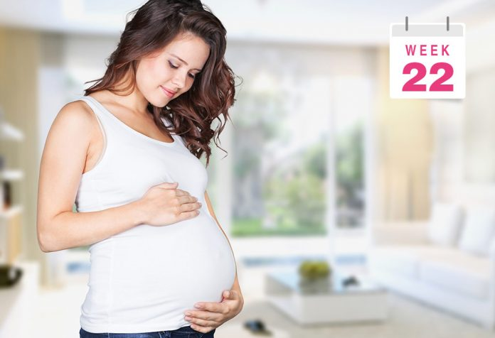 22 Weeks Pregnant: What To Expect