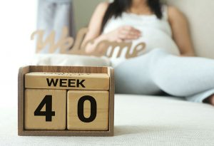 Pregnant woman with 40 weeks calendar