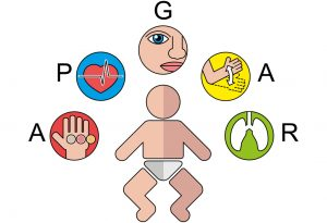 What does Apgar Test Evaluate?