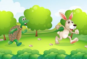 The Turtle and the Hare