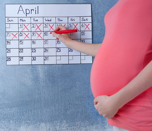 Calculate Your Pregnancy - By Months, Weeks and Trimester