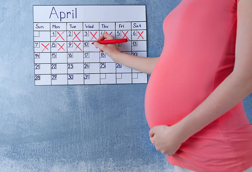 How To Calculate Pregnancy By Months, Weeks & Trimesters
