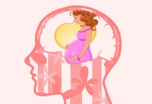 Illustration of a visible brain and pregnant woman