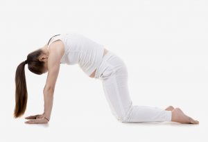 Woman doing cat-cow exercise