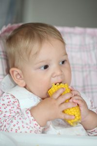 A baby eating corn