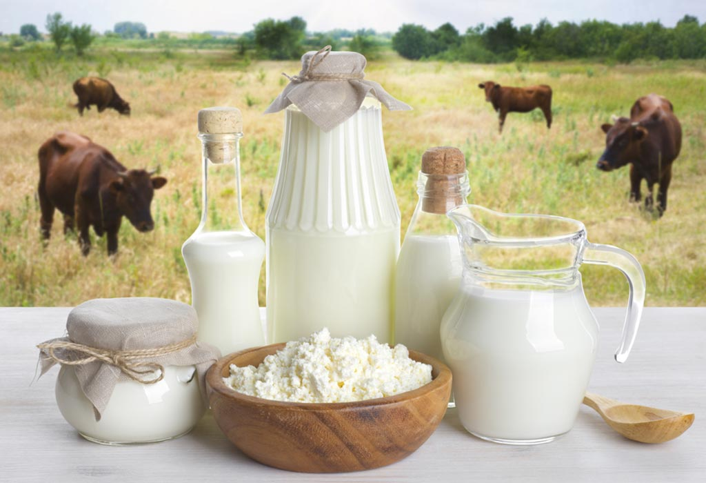 Cow Milk vs Buffalo Milk for Babies & Toddlers: What to Feed?