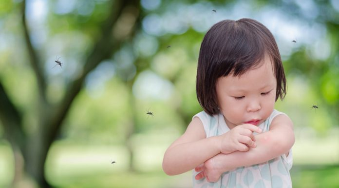 A little girl surrounded by mosquitoes at a park