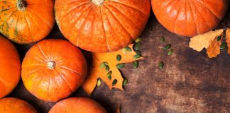 Consuming Pumpkin during Pregnancy