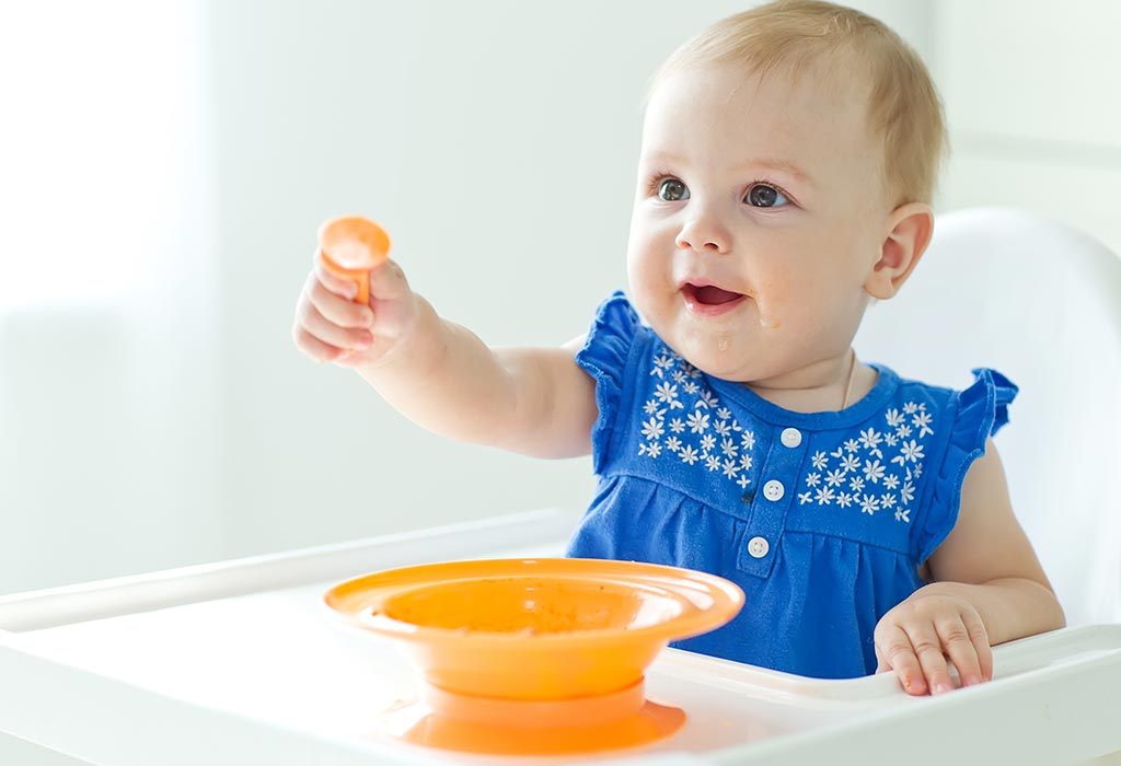 8 Months Old Baby Food Ideas