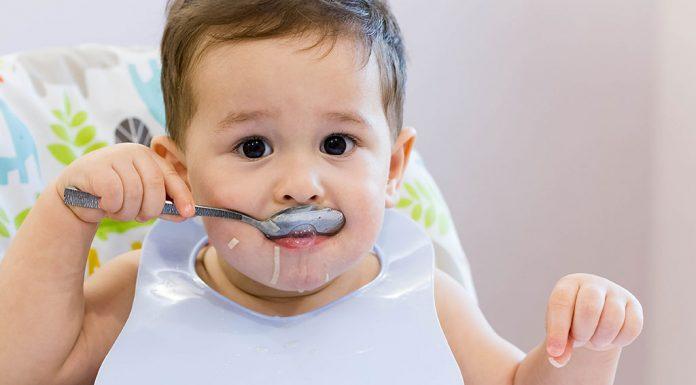 11 মাস বয়সী শিশুর খাদ্য ধারণা