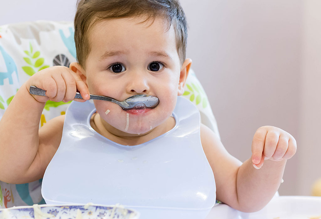 11 Months Old Baby Food Ideas