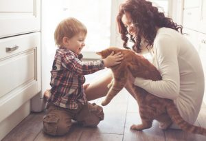 Interacting With Pets Needs to Be Handled With Care