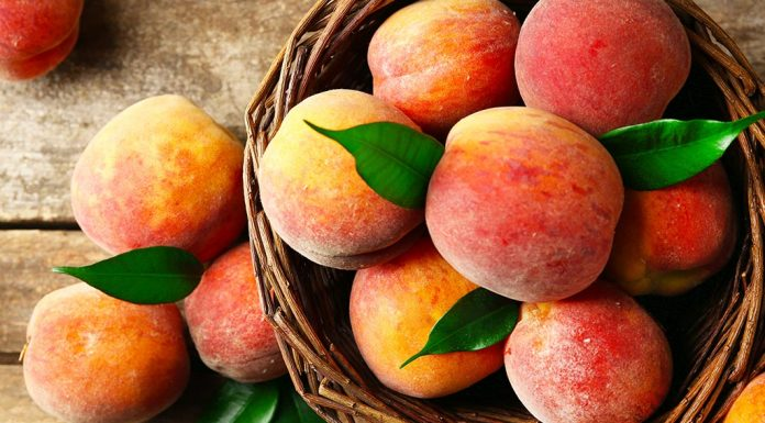 Eating Peaches in Pregnancy