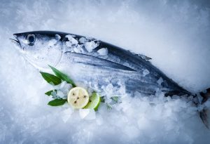 Common Tuna Types and Their Eating Rules During Pregnancy