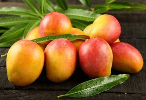 How to Choose and Store Mangoes