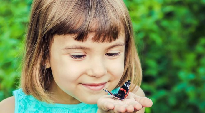 A little girl with a butterfly resting on her palm