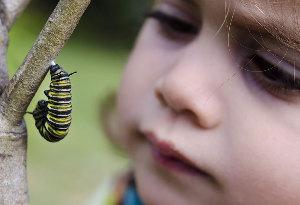 Spending Considerable time Outdoors can help children to Establish a Lifelong Bond With Nature