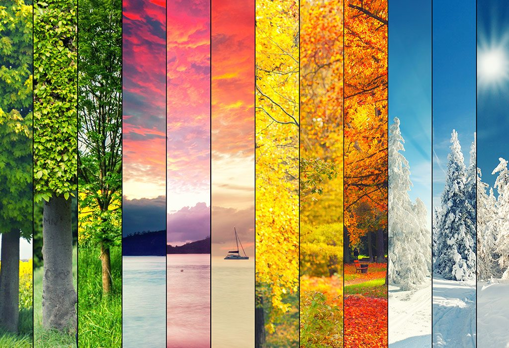 COLOURFUL SEASONS COLLAGE