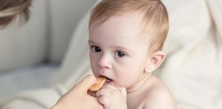 A baby eating a biscuit