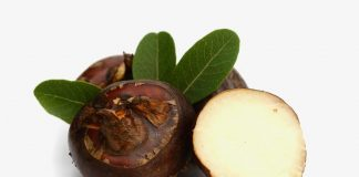 Singhara Fruit (Water Chestnuts) in Pregnancy - Benefits and Usage