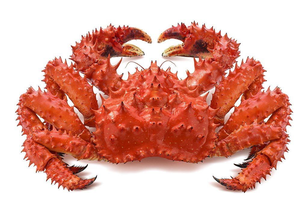 King Crabs Always