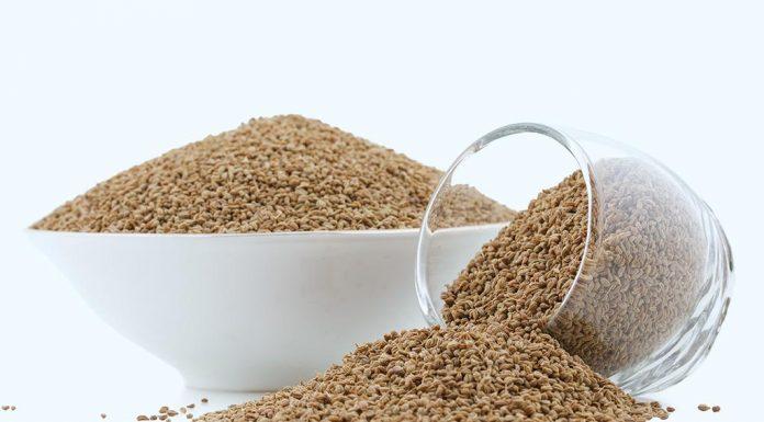 Eating Ajwain (Carom Seeds) During Pregnancy