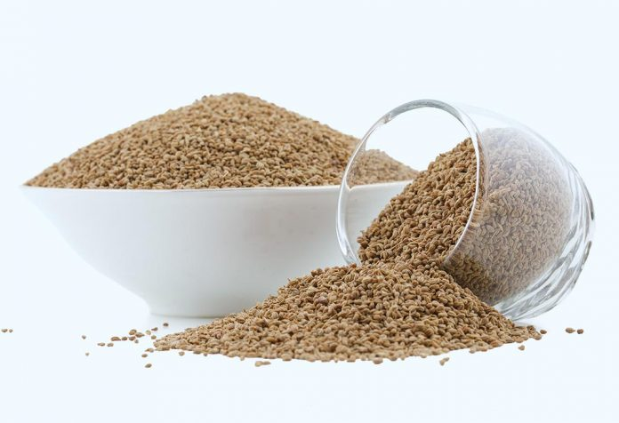 Eating Ajwain (Carom Seeds) During Pregnancy