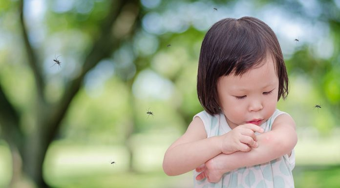 Dengue in Babies and Toddlers