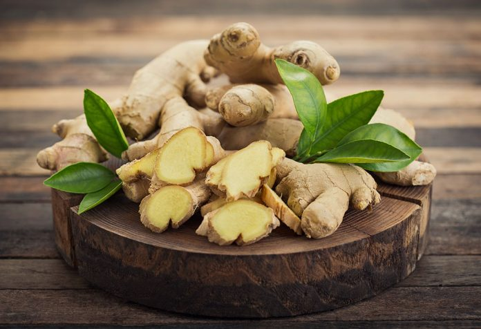 Ginger for Babies - Health Benefits and Safety Measures