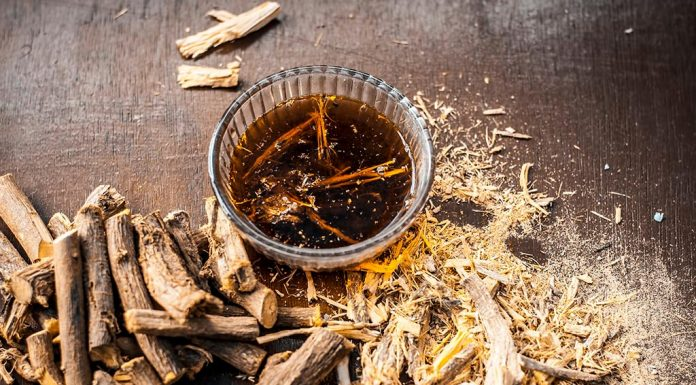 LICORICE ROOT DURING PREGNANCY