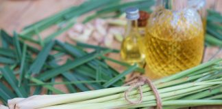 Lemongrass during Pregnancy - How Safe Is It?