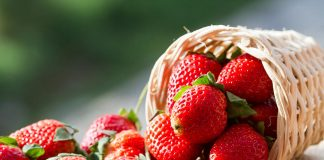 Eating Strawberries During Pregnancy – Is It Safe?
