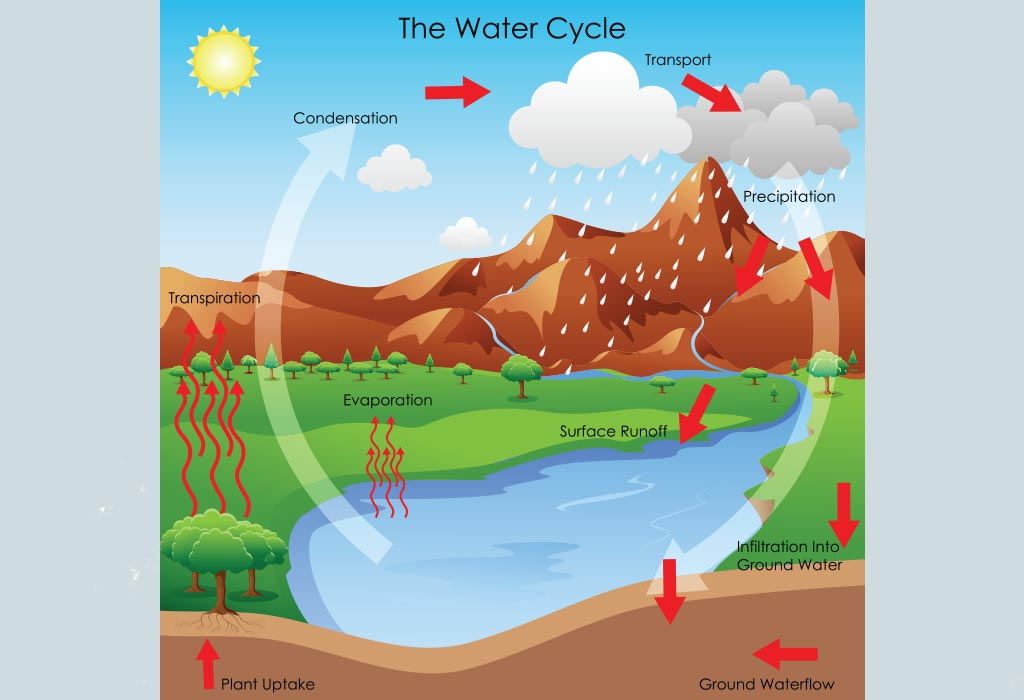 Wiring And Diagram  Diagram Of Water Cycle In Easy Way