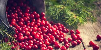 Cranberry during Pregnancy - Health Benefits and Risks