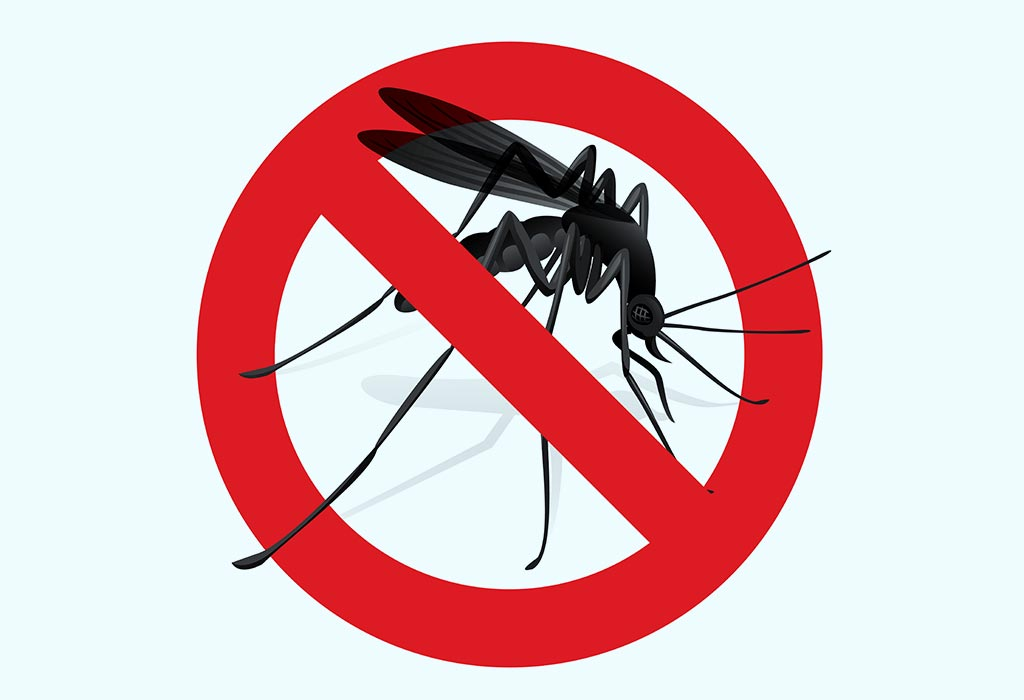 Natural Insect & Mosquito Repellents