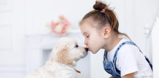 Top 20 Dog Breeds for Kids