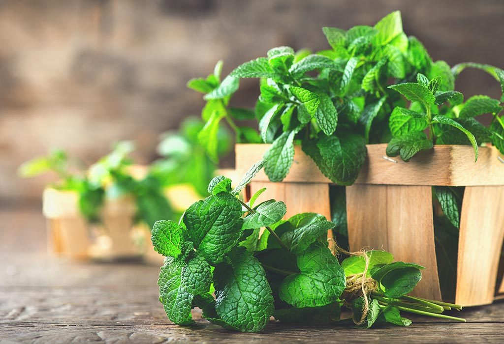Herbs Consumption in Pregnancy - Safe or Not?