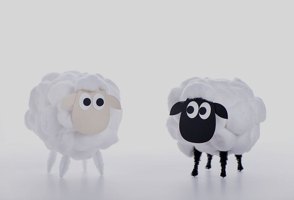 Baa BaaWhite Sheep