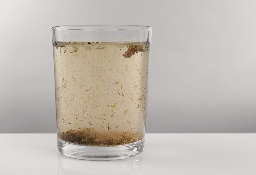 Contaminated water - a source of E. coli
