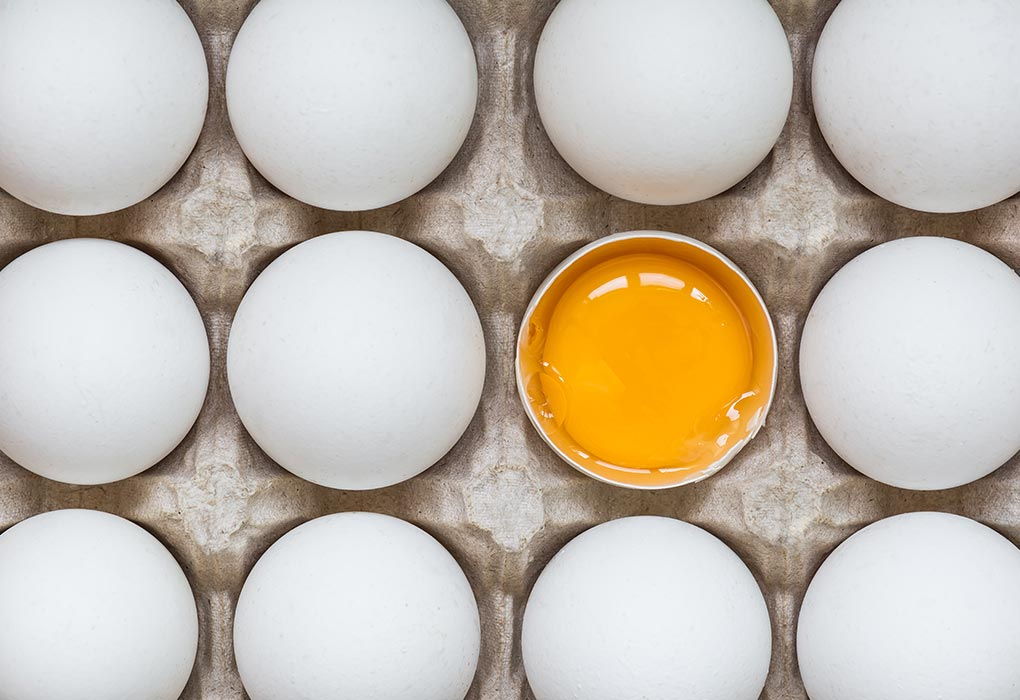 Food Sources of Choline